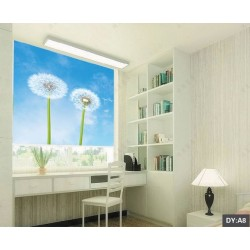 Custom Print Pictures for Blinds